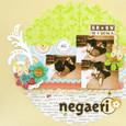 Negaeri